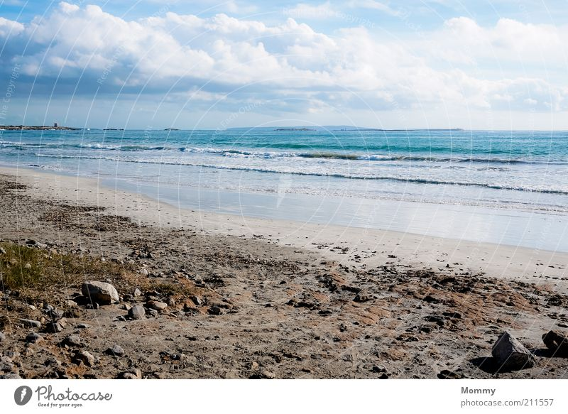 Day at the sea Sand Water Sky Clouds Sunlight Beautiful weather Waves Coast Beach Ocean Vacation & Travel Calm Colour photo Exterior shot Panorama (View)