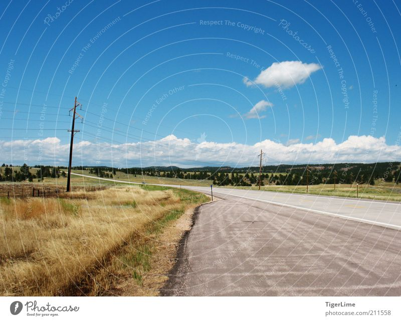 Roadside View Landscape Air Sky Clouds Horizon Summer Beautiful weather Warmth Drought Grass Plain Colorado Street Far-off places Free Infinity Hot Long Speed