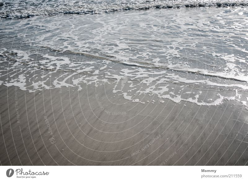 The Flood Nature Sand Water Beautiful weather Waves Coast Beach Ocean Wet Colour photo Exterior shot Day Wide angle Sandy beach Deserted Detail Flow