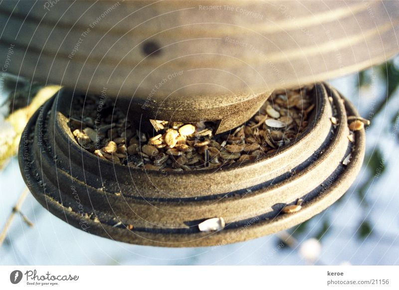 Winter Oats Birdhouse Sunflower seed Oat flakes