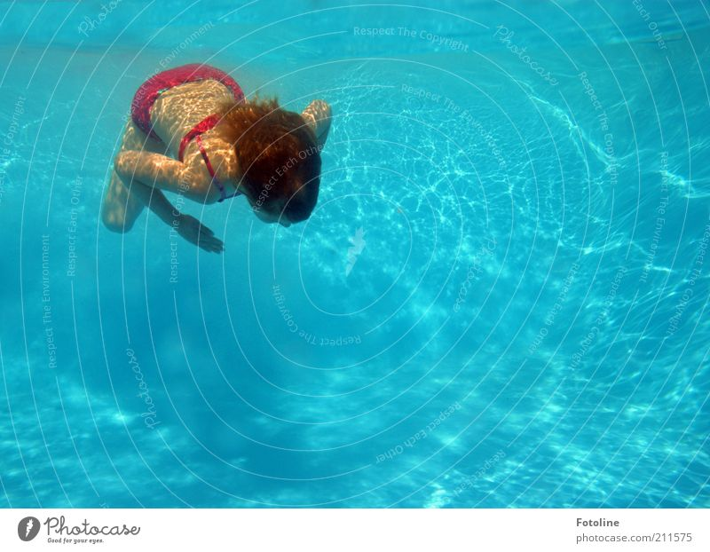 holiday fun Joy Swimming & Bathing Vacation & Travel Summer Human being Child Girl Infancy Skin Hair and hairstyles Back Arm Hand Legs Dive Bright Cold Wet Blue