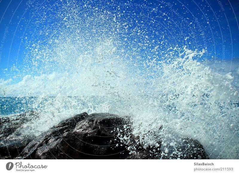 splash Water Drops of water Coast Reef Ocean Surf Glittering Wet Blue Power Colour photo Exterior shot Contrast Waves Splash of water Deserted Rock