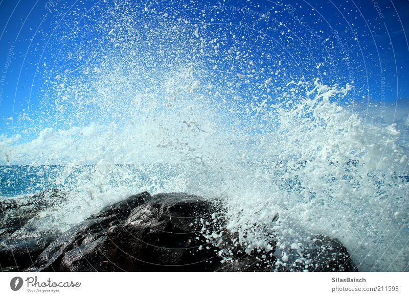 Water Ocean Blue Power Coast Waves Glittering Wet Drops of water Rock Surf Reef Force of nature Splash of water