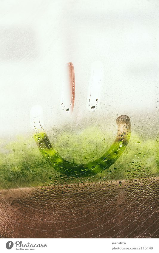 Smiley face in a wet window Face Nature Plant Water Drops of water Spring Weather Fog Rain Window Glass Crystal Smiling Cool (slang) Friendliness Happiness