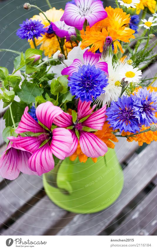 Flowers fresh from the field Summer Spring Multicoloured Bouquet Yellow Green Blue Orange White Cornflower Marigold Pink