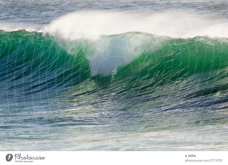 Nature Water Ocean Green Blue Life Movement Power Waves Glittering Wet Tall Climate Pure Wild Turquoise