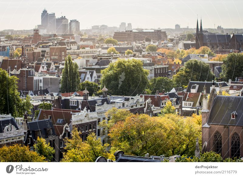 Above the roofs of Amsterdam Vacation & Travel Tourism Trip Far-off places Freedom Sightseeing City trip Autumn Port City House (Residential Structure)