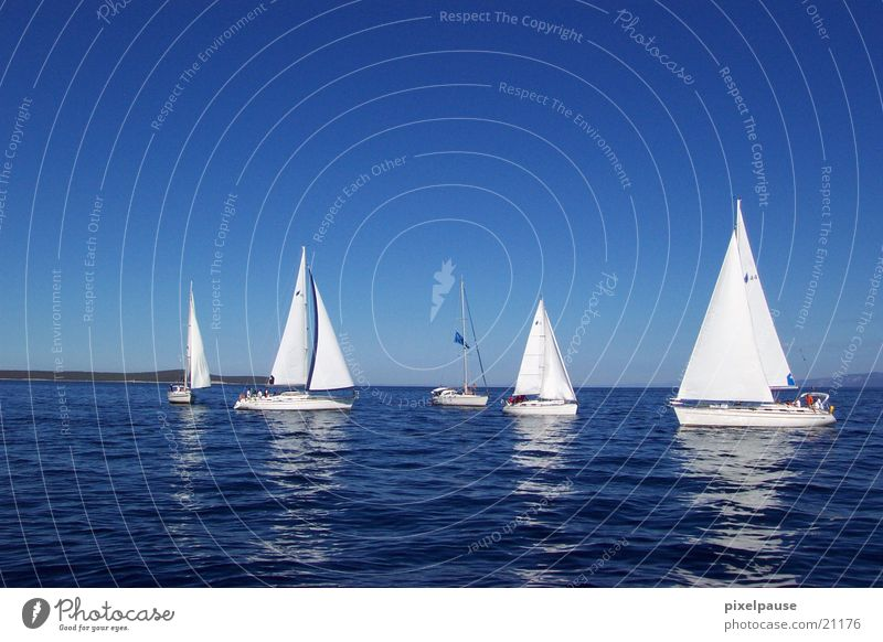 Ocean Sail Sailboat Calm Regatta