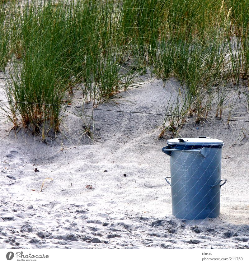 Plant Beach Sand Metal Environment Arrangement Clean Metalware Trash Footprint Beach dune Dune Wire Individual Environmental protection Tracks