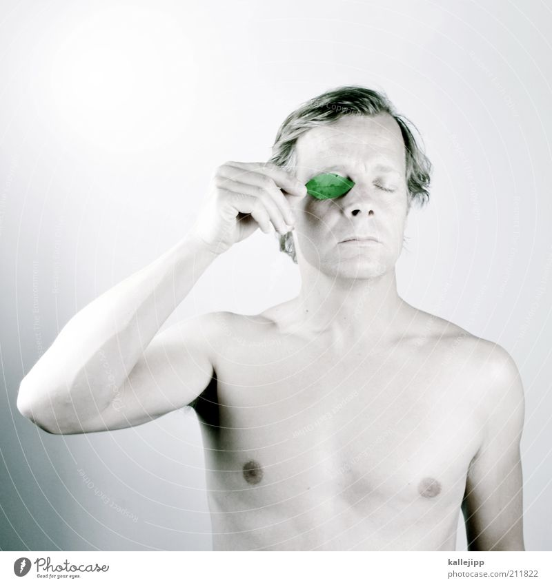 Man Nature Green Plant Leaf Face Eyes Environment Adults Naked Art Contentment Masculine Nude photography Environmental protection Sustainability