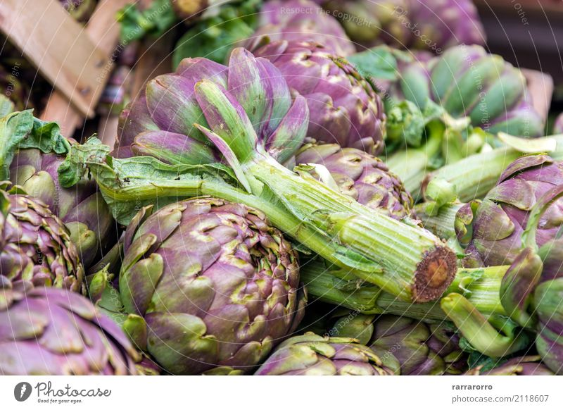 Group of artichokes Nature Plant Colour Green Flower Leaf Lifestyle Natural Garden Nutrition Growth Open Fresh Italy Delicious Vegetable