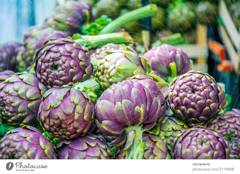 Group of artichokes Vegetable Nutrition Vegetarian diet Diet Lifestyle Garden Nature Plant Flower Leaf Growth Fresh Delicious Natural Green Colour agriculture