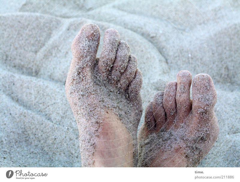 sandich salzich fischich happy Skin Relaxation Summer Beach Human being Feet 2 Sand Warmth Baltic Sea Lie Wet Soft Blue Gray Break Sticky Granules Grain of sand
