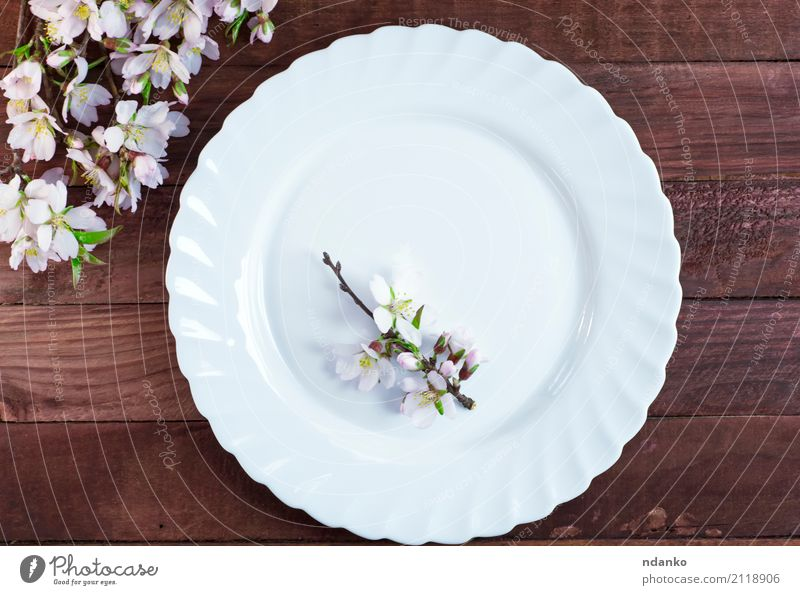 Empty white plate Crockery Plate Flower Wood Fresh Brown White empty branch almonds Dish Top utensils Colour photo Deserted