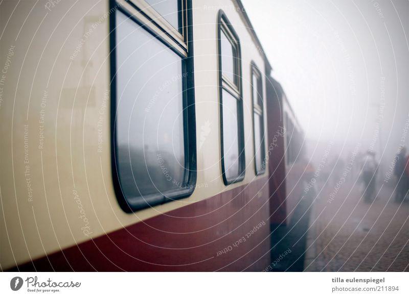 destination unknown Vacation & Travel Trip Freedom Sightseeing Autumn Bad weather Fog Traffic infrastructure Passenger traffic Train travel Rail transport