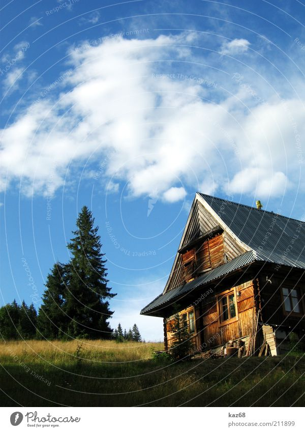 Tatra Vacation & Travel Tourism Trip Mountain Living or residing House (Residential Structure) Nature Landscape Tree Grass Building Architecture Wood Relaxation