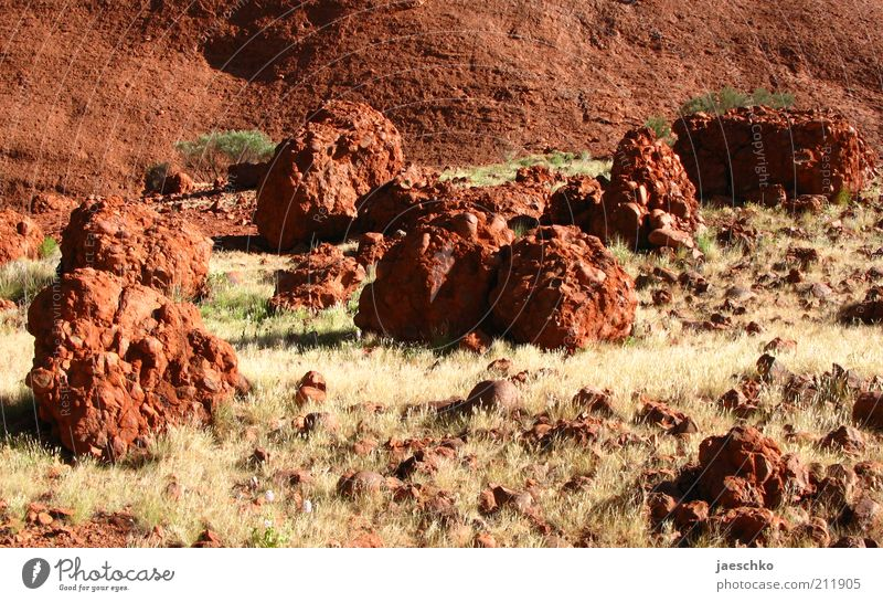red planet Landscape Elements Earth Warmth Drought Grass Steppe Stone Hot Wild Red Bizarre Surrealism Gravel Fragment Kata Tjuta Outback Martian landscape