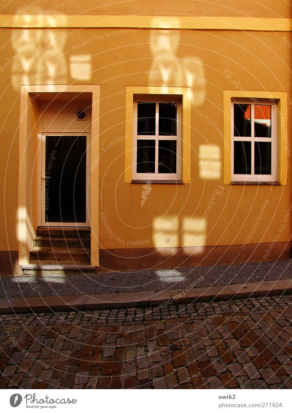 House (Residential Structure) Street Window Wall (building) Stone Dye Wall (barrier) Bright Orange Germany Door Glass Facade Stairs Illuminate Plastic