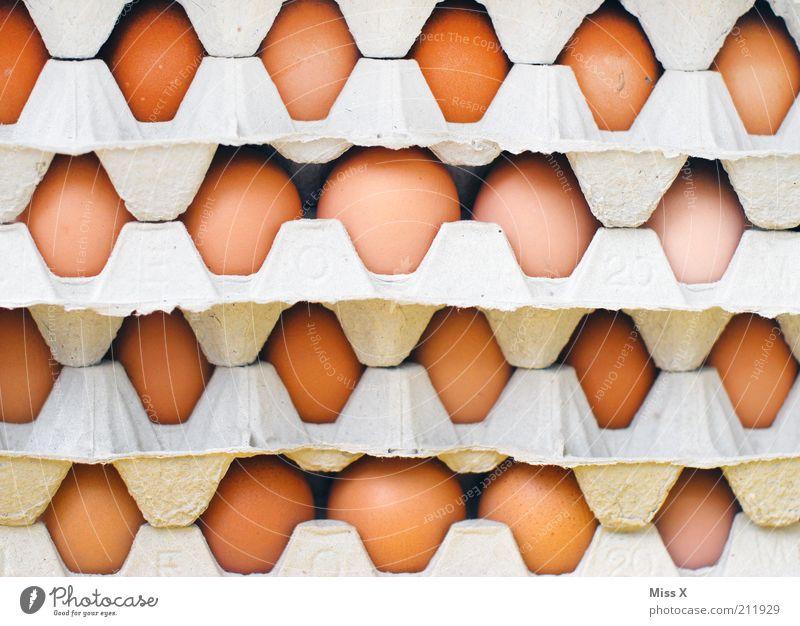 Food Nutrition Round Egg Cardboard Stack Packaging Goods Things Paper Animal Eggs cardboard