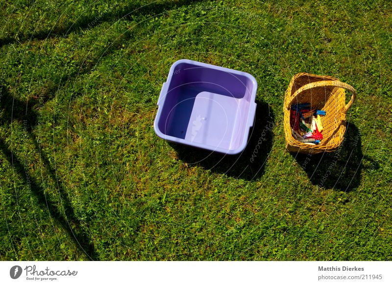 Nature Work and employment Meadow Air Environment Empty Arrangement Lawn Violet Living or residing Nostalgia Ecological Effort Laundry Bowl