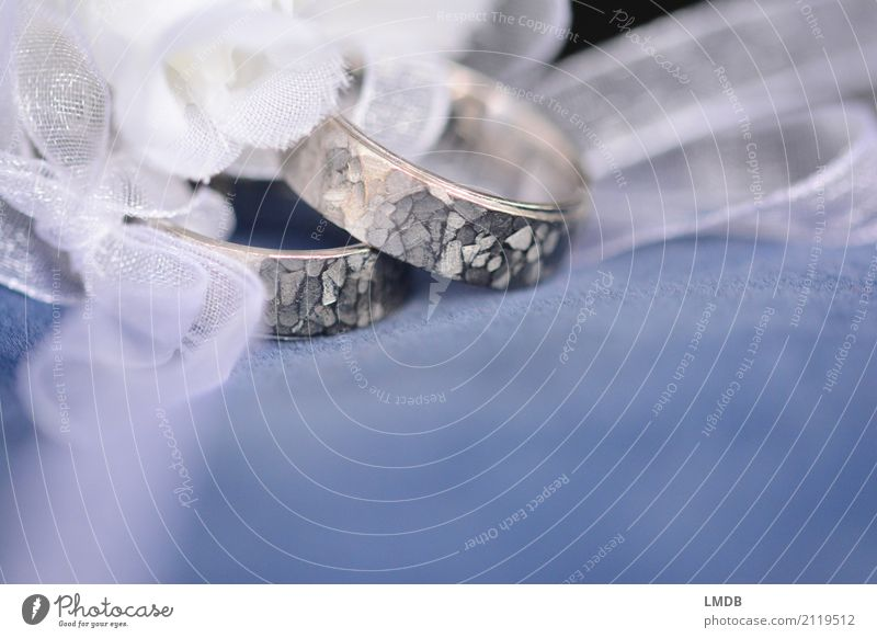 Love Happy Together Glittering Round Wedding Select Jewellery Ring Silver Bow Noble Married couple Matrimony Precious Expensive