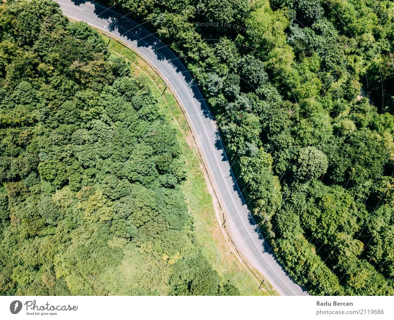 Aerial View Of Road Running Through Carpathian Mountains Forest Nature Vacation & Travel Plant Summer Colour Green Tree Landscape Far-off places Street