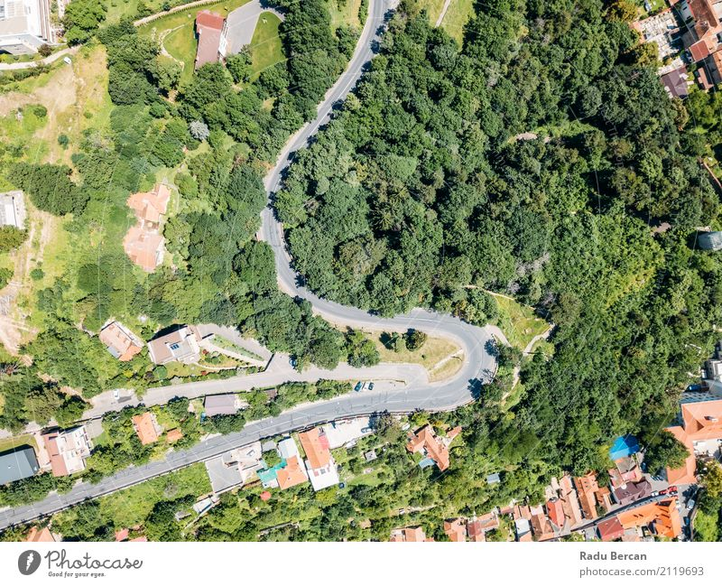 Aerial View Of Road Running Through Carpathian Mountains Forest Vacation & Travel Summer Environment Nature Landscape Plant Tree Transport