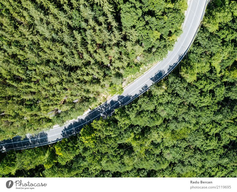 Aerial View Of Road Running Through Carpathian Mountains Forest Nature Vacation & Travel Plant Summer Colour Beautiful Green Landscape Tree Far-off places