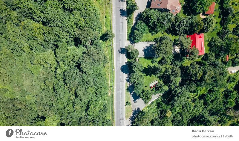 Aerial View Of Road Running Through Carpathian Mountains Forest Environment Nature Landscape Earth Summer Beautiful weather Tree Grass Meadow Field Transport