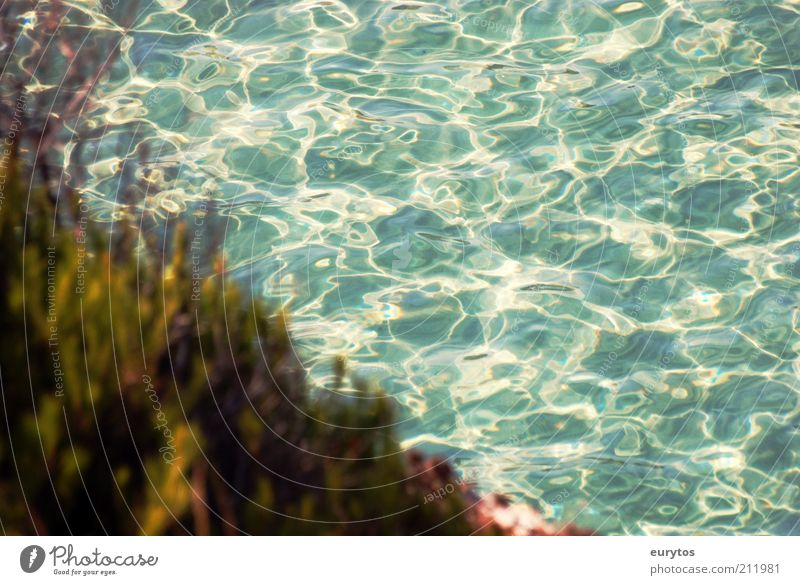 Nature Water Ocean Green Blue Summer Landscape Coast Weather Environment Bushes Climate Turquoise Beautiful weather Majorca Mediterranean