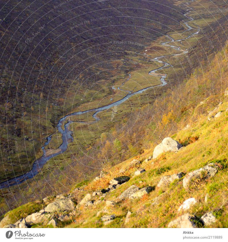 Nature Landscape Loneliness Calm Autumn Lanes & trails Wild Contentment Gold Perspective Uniqueness Energy Climate Change River Elements