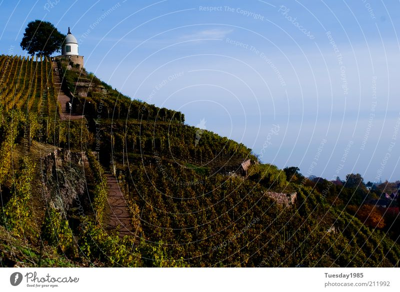The slope to the drop of the gods Landscape Sky Spring Beautiful weather Foliage plant Agricultural crop Rock Peak Exceptional Historic Sustainability Natural