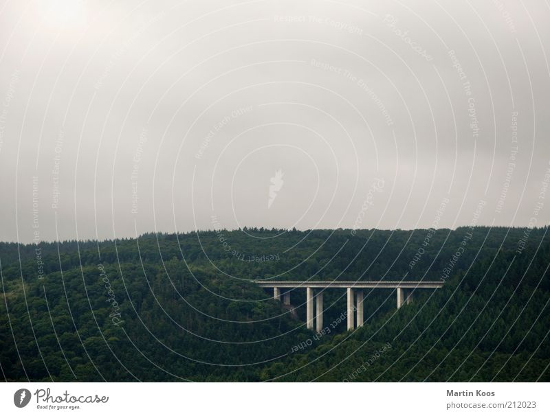 Nature Forest Mountain Landscape Road traffic Environment Large Transport Bridge Climate Traffic infrastructure Valley Pylon Clouds in the sky Cloud cover