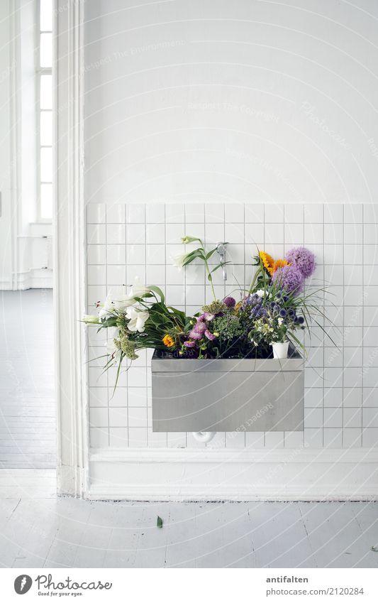 Pelvic flower box Lifestyle Living or residing Flat (apartment) Interior design Decoration Room Atelier Event Work and employment Profession Artist's werkstatt