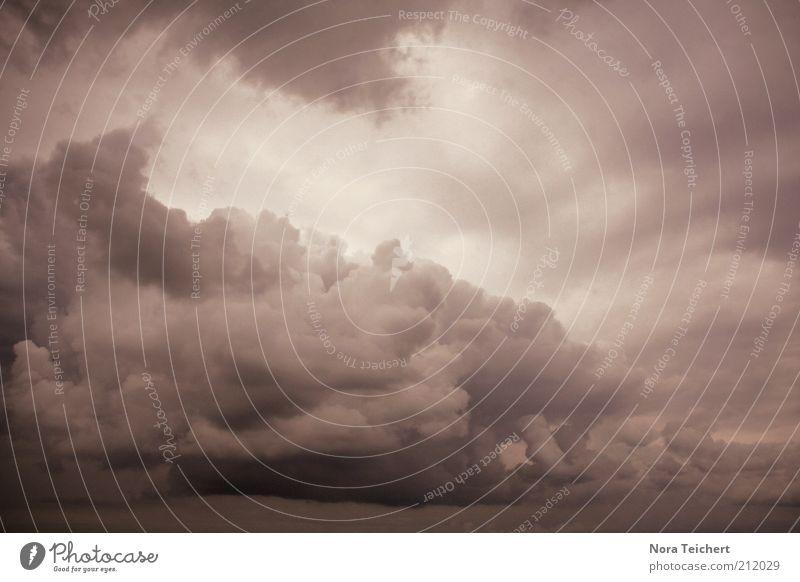 Nature Sky Summer Clouds Far-off places Autumn Dream Rain Landscape Air Moody Fear Wind Environment Horizon Dangerous