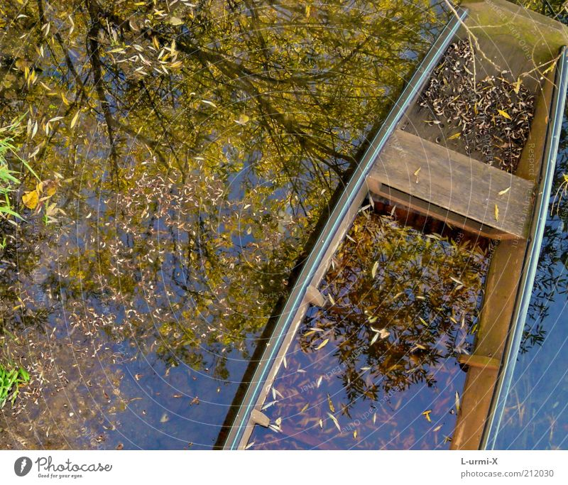 autumn boat trip Water Autumn Tree Leaf Lakeside River bank Bog Marsh Pond Brook Boating trip Fishing boat Rowboat Blue Brown Multicoloured Yellow Dream