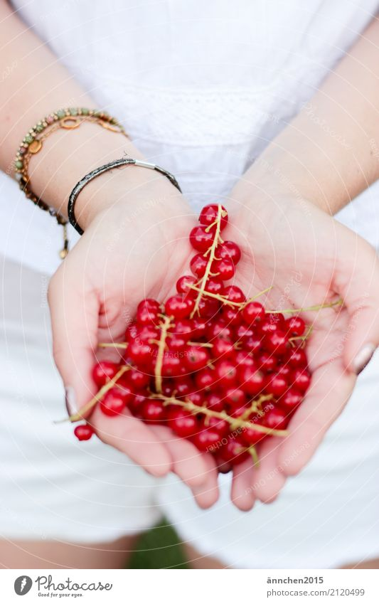 Currants II Berries Redcurrant Healthy Eating Dish Food photograph Summer Accumulate Fruit Hand To hold on Woman White Green Spring