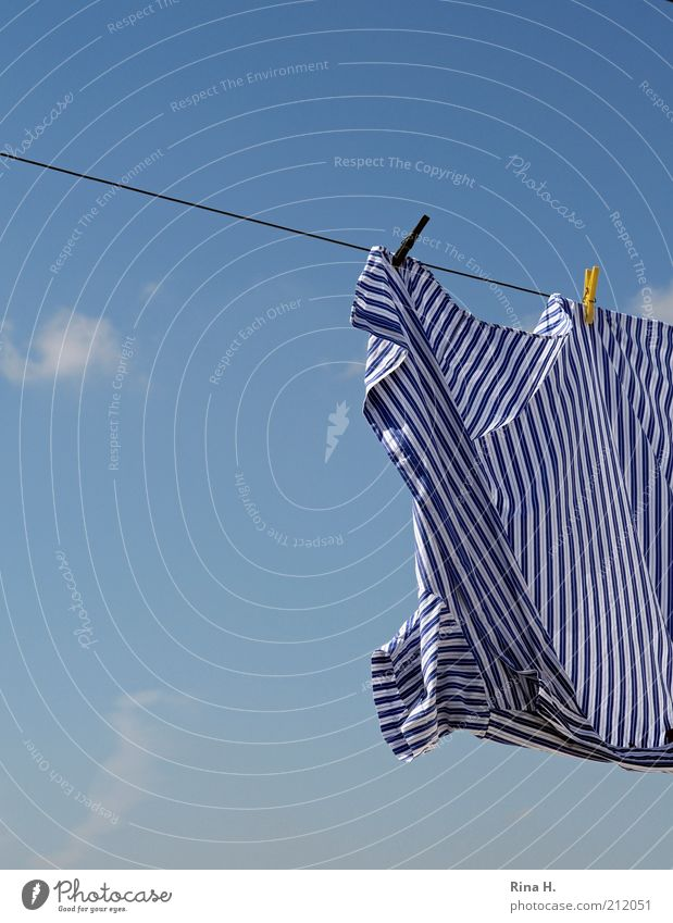 Sky Air Wet Fresh Clean Stripe Shirt Beautiful weather Laundry Striped Dry Section of image Clothesline Purity Clothes peg Cleanliness