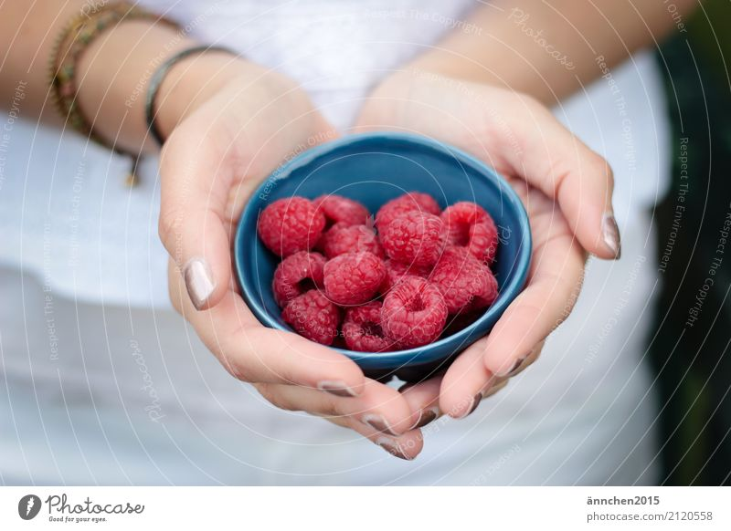 Raspberries :) Raspberry Bowl Blue Hand To hold on Red Summer Joy Healthy Eating Dish Food photograph Pick amass Process Fruit Nature Plant Landscape format