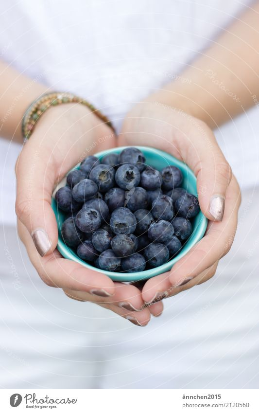 blueberries III Blueberry Healthy Eating Dish Food photograph To hold on Hand Youth (Young adults) Young woman Nature Bright Exterior shot healty Berries Fruit