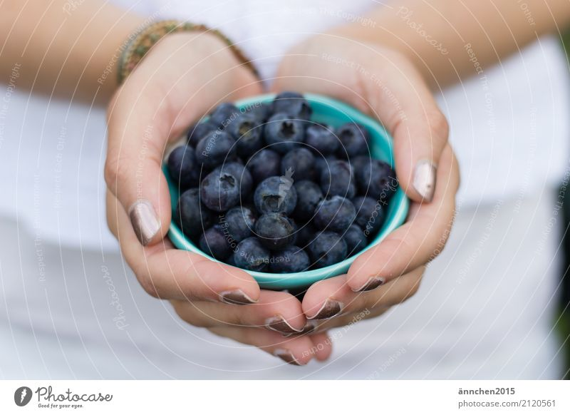blueberries Summer Nature Berries Fruit To hold on Bowl Blueberry Vacation & Travel amass Healthy Eating Dish Food photograph Cooking White Turquoise Hand