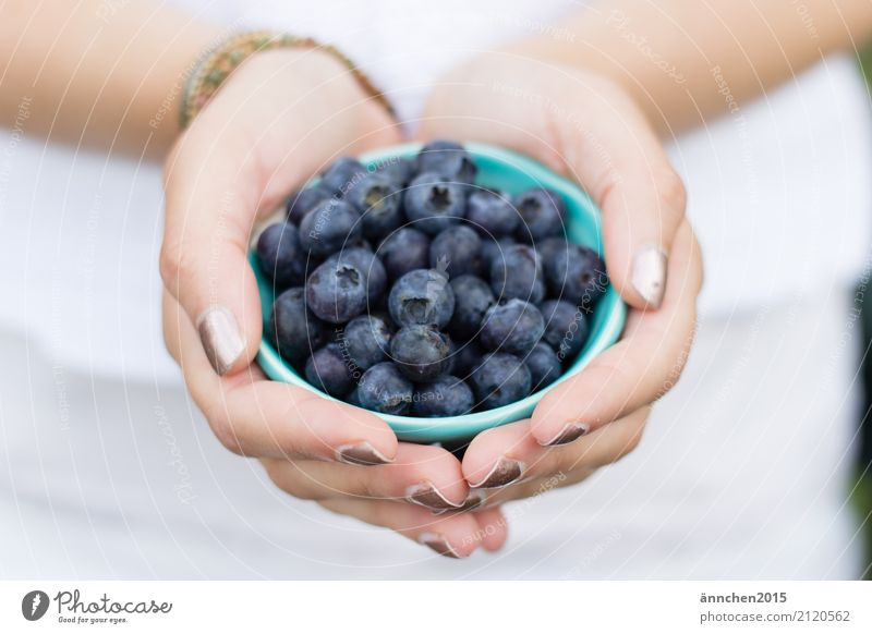 blueberries II Blueberry Healthy Eating Dish Food photograph To hold on Youth (Young adults) Young woman Nature Bright Exterior shot healty Berries Fruit