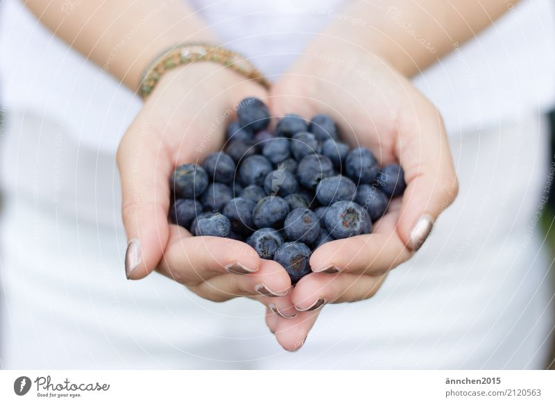 Blueberries I Blueberry Healthy Eating Dish Food photograph To hold on Youth (Young adults) Young woman Nature Bright Exterior shot healty Berries Fruit