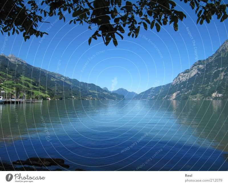 The mountain lake Nature Landscape Water Cloudless sky Horizon Summer Beautiful weather Alps Mountain Lakeside Walensee Blue Moody Calm Symmetry Colour photo