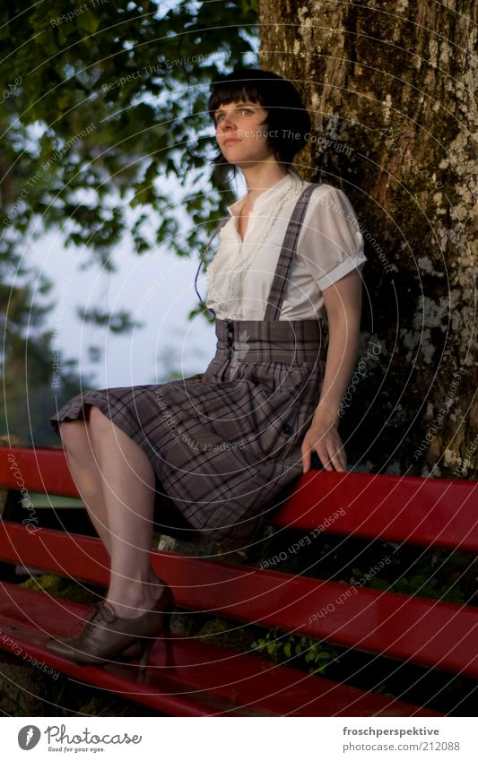 Nature Tree Red Summer Calm Moody Sit Bench Skirt Tree trunk Tradition Emotions Lean Costume Short-haired Conventional
