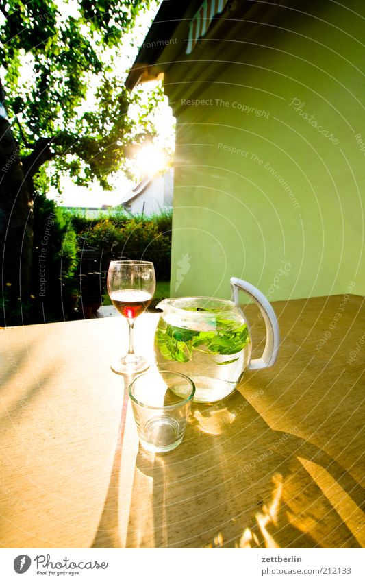 Nature Tree Plant House (Residential Structure) Relaxation Wall (building) Garden Glass Facade Table Wellness Wine Idyll Herbs and spices Nutrition Sunset