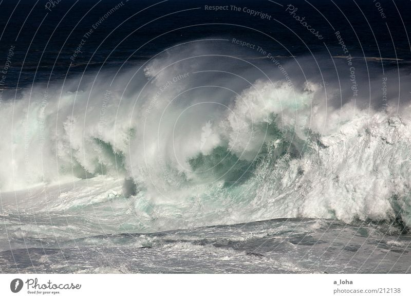 big wave surfing Far-off places Nature Elements Water Summer Climate Waves Coast Ocean Exceptional Threat Fluid Gigantic Cold Wet Speed Power Movement Chaos