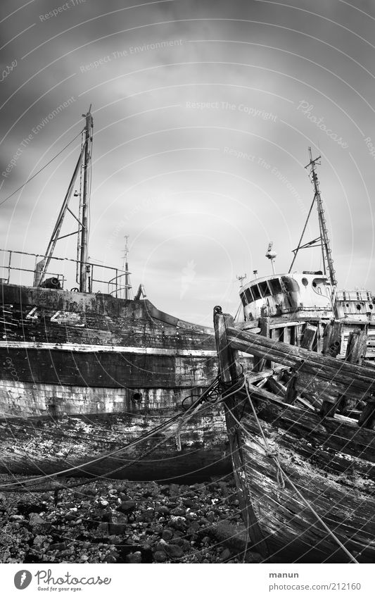 out of order Fishery Fishing port Harbour Navigation Fishing boat Wreck Old Broken Decline Transience Destruction Black & white photo Exterior shot Day Sunlight