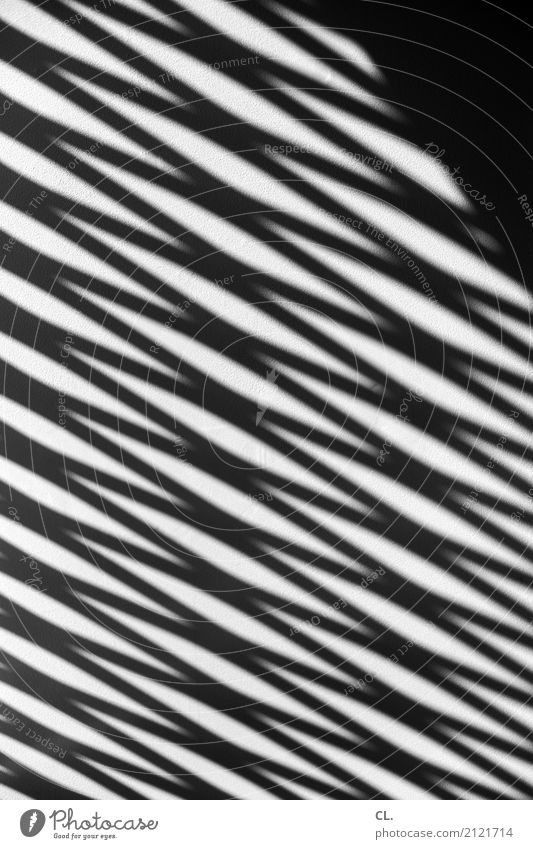 zigzag Deserted Wall (barrier) Wall (building) Line Esthetic Sharp-edged Complex Precision Stress Zigzag Shadow play Black & white photo Exterior shot Abstract