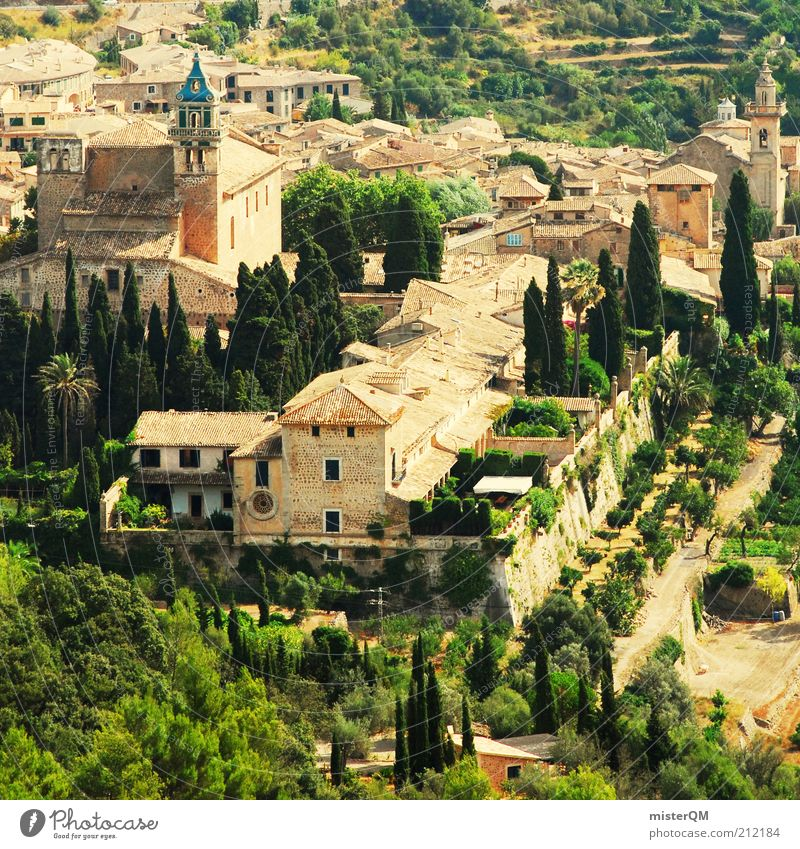 Old City Vacation & Travel Tourism Church Travel photography Historic Spain Tree Wanderlust Majorca Valley Tourist Attraction Mediterranean Old town Monastery